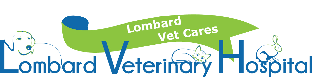Lombard Vet Cares